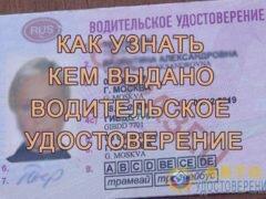 Как узнать кем выдано водительское удостоверение (права) в 2018 году